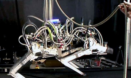 One of DARPA&#39;s creations, the M3 &#34;Cheetah&#34; Robot