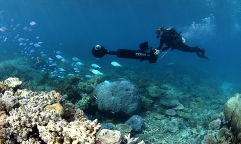 A team member of the Catlin Seaview Survey works to capture the Great Barrier Reef.
