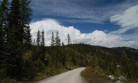 The Forest Service owns and manages many national forests, including Montana&#39;s Lolo National Forest .