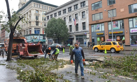 Sandy took down trees in New York in the fall.