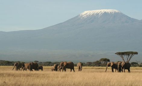 Tanzania's Mount Kilimanjaro is one of the peaks photographed by Google's Street View.