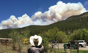 Tracy Bennett  watches a large plume of smoke rise from a wildfire Friday near Pecos, New Mexico.