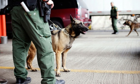 U.S. Customs and Border Protection agents and K-9 security dogs keep watch at a checkpoint station, on Feb. 22, 2013, in Falfurrias, Texas.