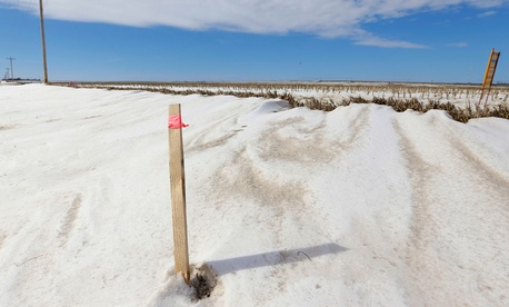 A wooden stick with a pink ribbon marks the proposed route of the Keystone XL pipeline through farmland near Bradshaw, Nebraska.