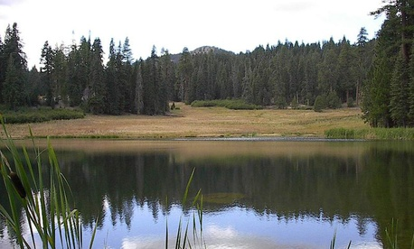 In its final days, the Clinton administration protected hundreds of acres of forest, including  Mendocino National Forest.