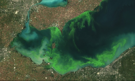 This satellite image shows the formation of algal blooms in Lake Erie during the summer of 2011.