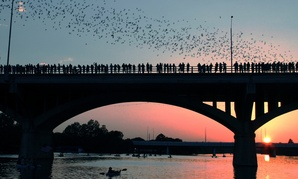 Beyond being a hub for bats, Austin, Texas, attracts plenty of career-minded college grads, too.