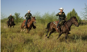 The bill instructs DHS to employ at least 21,370 Border Patrol agents.