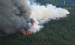 The Packer Meadows Fire on the Lolo National Forest in 201.