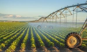 A pivot sprinkler system irrigates a farm.