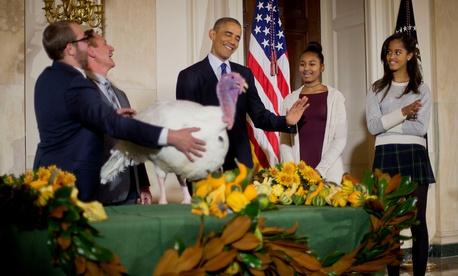 Obama pardons a turkey in 2014.
