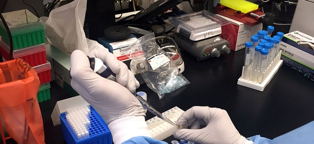 A Zika virus researcher at the NIAID Vaccine Research Center pipets samples in April.