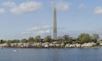 Cialis would be the perfect sponsor for the Washington Monument.