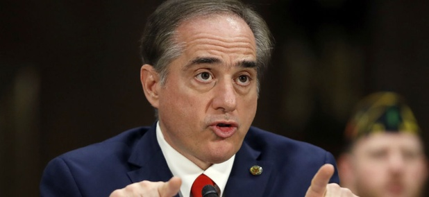VA Secretary David Shulkin testifies at his confirmation hearing.