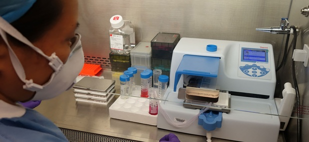 An NCATS researcher dispenses Zika virus into trays for compound screening in a lab in 2016.