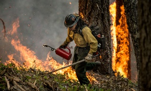 "A member of an interagency firefighting crew conducts a prescribed burn ""burnout"" operation in Oregon to help stop the main fire from spreading."