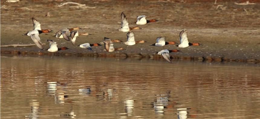 Bird watching at Kirwin National Wildlife Refuge in Kansas.