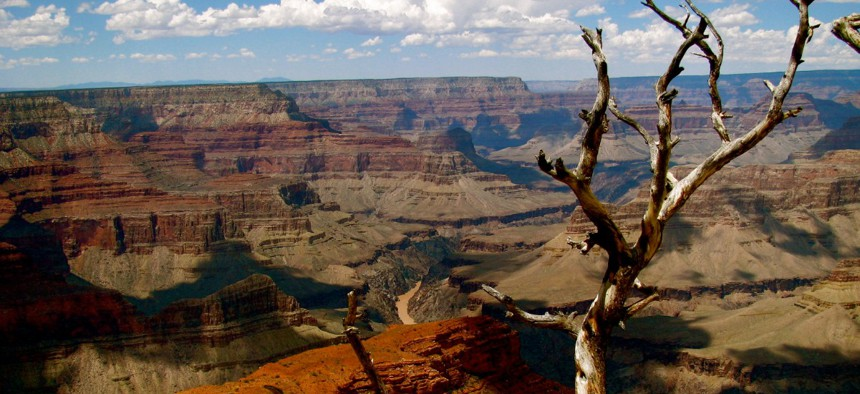 The Grand Canyon National Park is closed, but not all parks are.