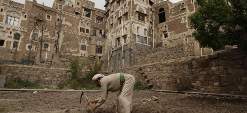 A farmer works on his farm in the old city of Sanaa.