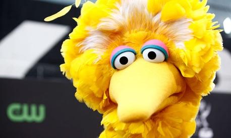 Sesame Street's Big Bird.