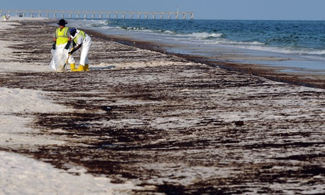 Workers clean up a beach in Florida after the BP oil spill.