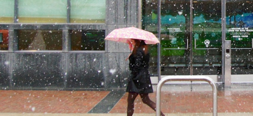 "The ""Snowquester"" fell on Washington Wednesday."