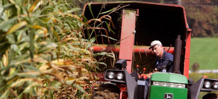 Dr. Sam Simon chops corn on his dairy farm outside Hyde Park, N.Y.