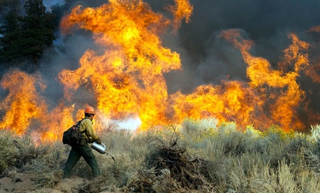 Daniel Fawcett of the U.S. Forest Service sets a back-fire to combat a wildfire in Wrightwood, Calif. in 2009.