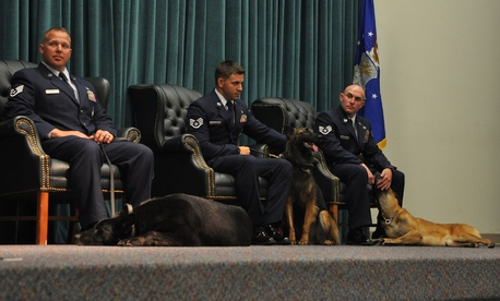 Handlers SSgt. Dwight Veon, SSgt. Jesse Galvan, and SSgt. James Cochran sat next to their dogs Blacky, Cita, and Sheila during a retirement ceremony held at Tinker Air Force Base on June 25.