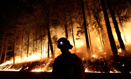 Firefighter helps battle the Rim Fire near Yosemite National Park, Calif.