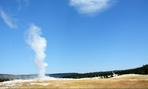Old Faithful is one of the more popular attractions at Yellowstone National Park.