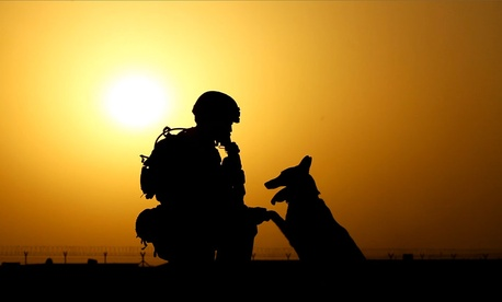 A soldier and military working dog, in Afghanistan.