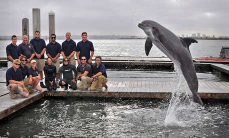 Members of the code 715 Marine Mammal Team at Space and Naval Warfare Systems Center Pacific, in San Diego.