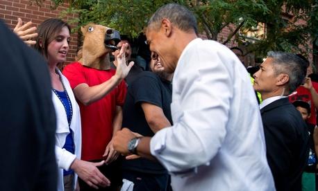 President Barack Obama laughs as he spots a man wearing a horse-head mask during an impromptu walk down a street in Denver.