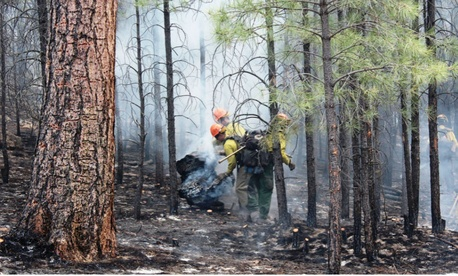 Firefighters are among the temporary seasonal employees the legislation could benefit.