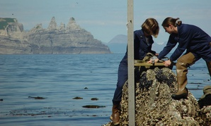 NOAA employees install a tide gauge near Castle Cape, Alaska. NOAA was rated as the most responsive scientific agency.