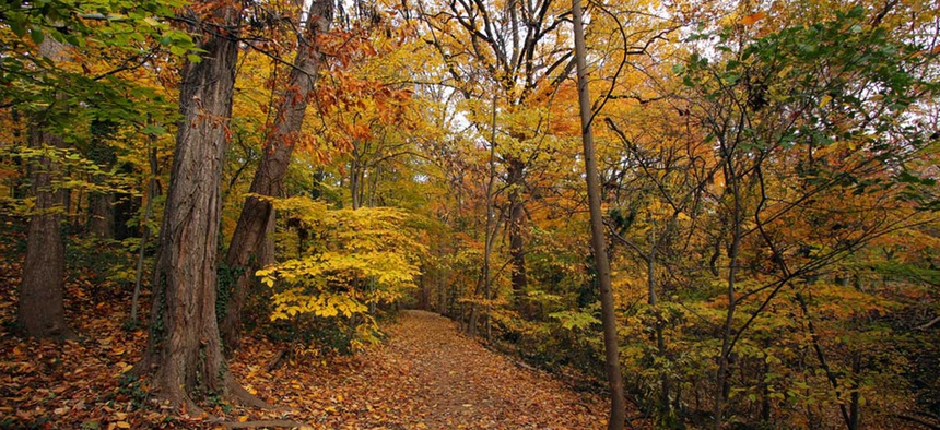 Rock Creek Park in D.C. is pictured.