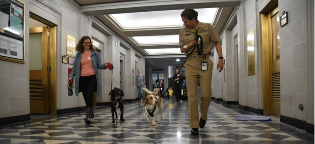 Employees at Interior Department headquarters in May on the department's first Bring Your Dog to Work Day.