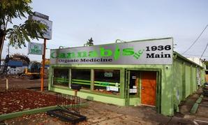 A medical marijuana dispensary in Springfield, Or.