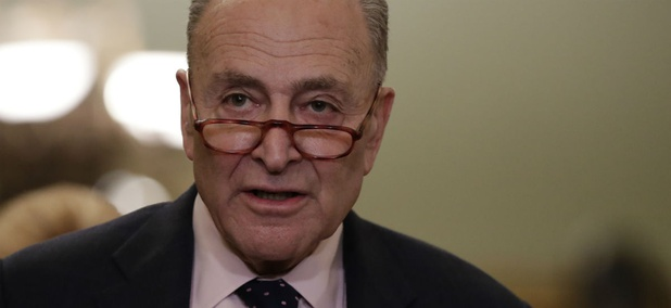 "Senate Minority Leader Chuck Schumer said: ""We are trying to get the conferees to approve a proposal to deal with federal contracts."""