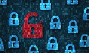 Flash Poll: Managing Cyber Risk