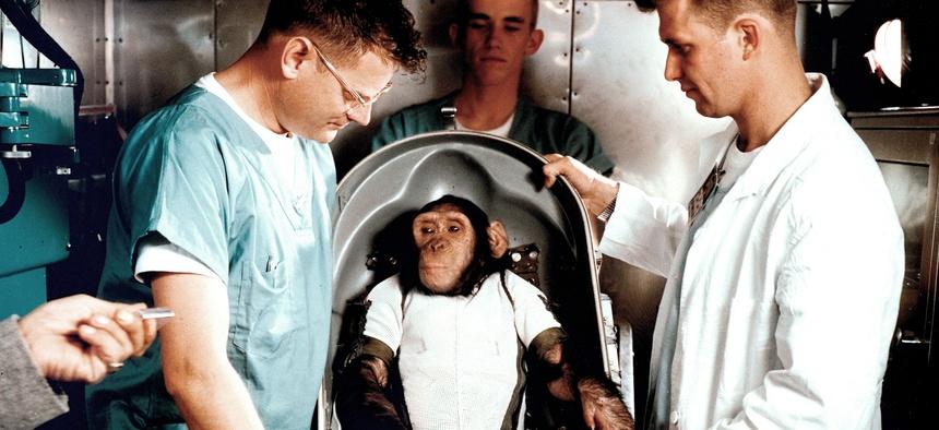 Ham the chimpanzee, with Bill Britz, a veterinarian (right), in the white coat, in 1961.