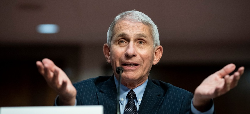 Director of the National Institute of Allergy and Infectious Diseases Dr. Anthony Fauci testifies on Capitol Hill on June 30.