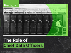 The Role of Chief Data Officers